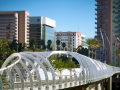 LBB-bridge-span-with-oculus