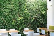 Ökodesign – jetzt wird alles grüner!