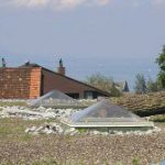Bauder – Das Dachbiotop
