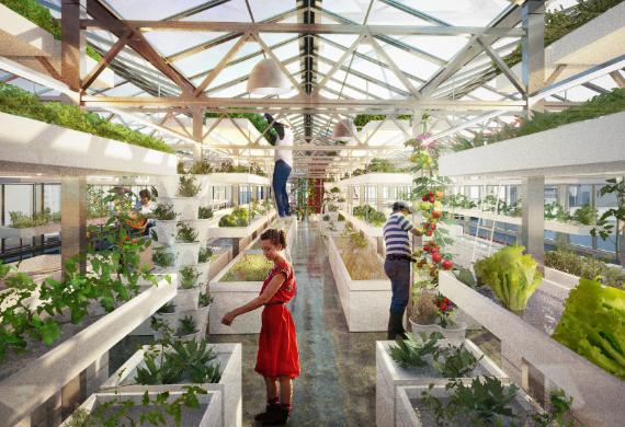 urban farming urban gardening architektur online architektur online. Black Bedroom Furniture Sets. Home Design Ideas