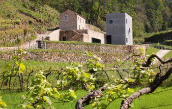 Mehr als Wein und Architektur