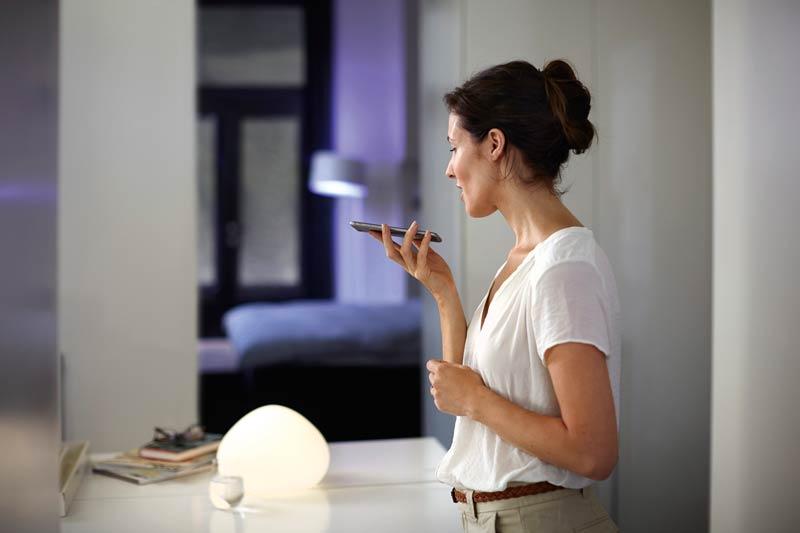 Lichtplanung mit Sprachsteuerung