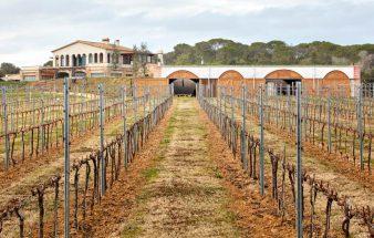 Unter der Erde – Mont-Ras Winery