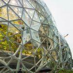 Ein Regenwald unter Glaskuppeln
