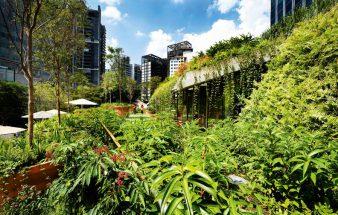 Grüne Architektur – handeln statt reden!