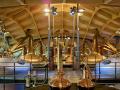 Macallan-Destillery-Mark-Power-Magnum-Photos-(23)