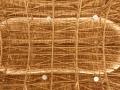 Bamboo-Sports-Hall-Panyaden-School-12