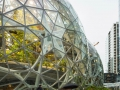 Amazon-Spheres7-by-Alex-Crook
