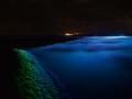 WaterlichtRoosegaarde3