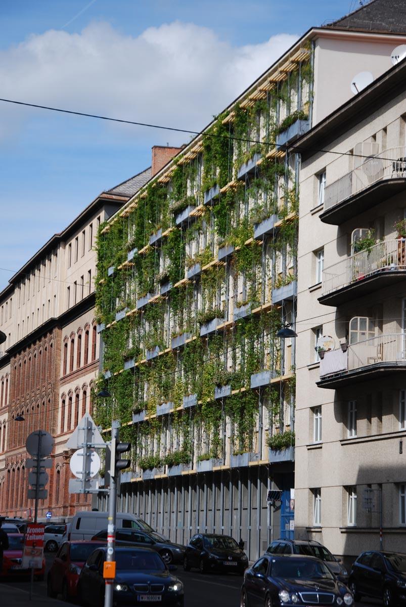 Fassadenbegrünung Regalkonstruktion auf einem öffentlichen Gebäude in Wien