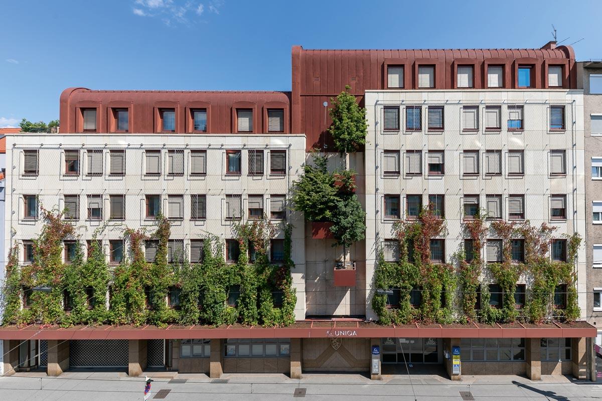 Bauwerksbegrünung - Die Fassade dieses Grazer Gebäudes wird mit Bäumen und Kletterplanzen begrünt