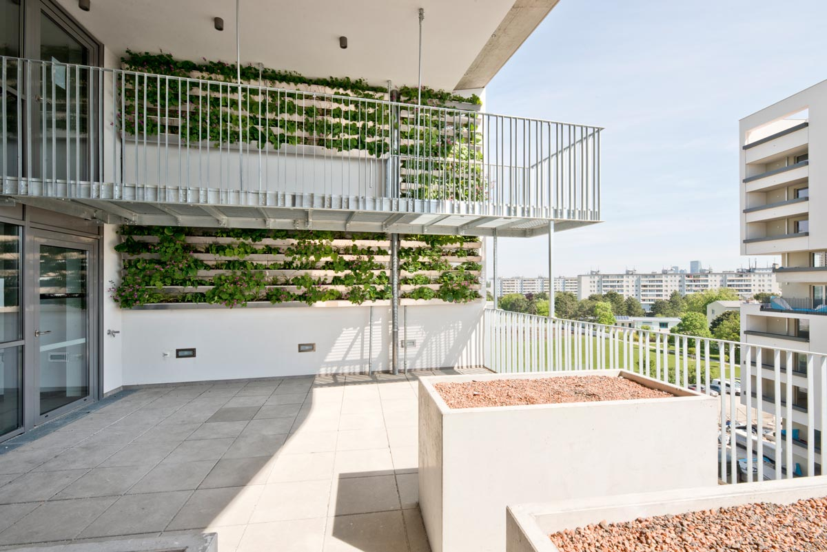 Wabe 23 von Treberspurg & Partner Architekten am Erlaaer Flur