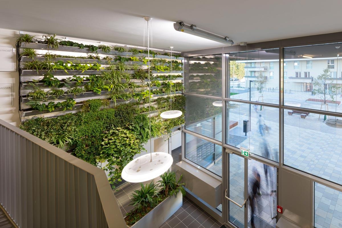 Wabe 23 von Treberspurg & Partner Architekten